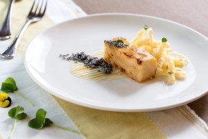 Sedano Rapa, uno degli antipasti vegetariani del ristorante Villa Giulia a Fano.