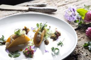 tacos-di-farro-caponatina-tiepida-di-verdure-ed-erbe-aromatiche-web